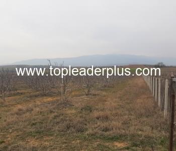 Земеделски имот с площ от 27 700 кв.м в село близо до гр. Сандански