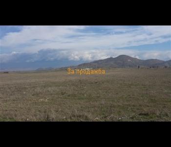 Продажба на земеделска земя от 4.000 дка в близост до зеленчуковата борса на село Кърналово