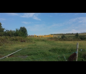 """Продажба на земеделски имот с площ  от 6.029 декара в местността """"ДРУМА"""""""