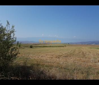 Продажба на земеделски имот с площ от 5,007  декара в с. Лешница, общ. Сандански