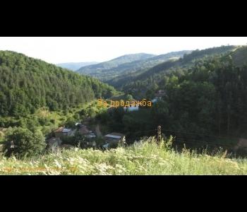 Гора с площ от 52 дка в землището на община Струмяни