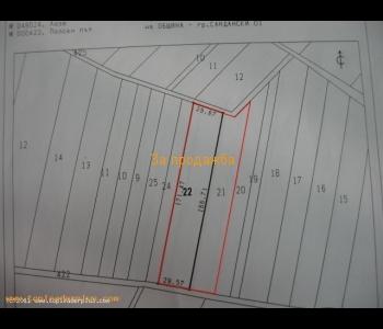 Продажба на лозе с площ от девет декара