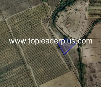 Продажба на лозов масив от 35 декара в землището на с. Капатово, община Петрич и 80 дка в зем. на с.Склаве