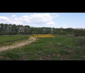 Продажба на земеделски имоти с площ от 3.799 дка, 6.579 дка и 6.047 дка в землището на с. Митиново