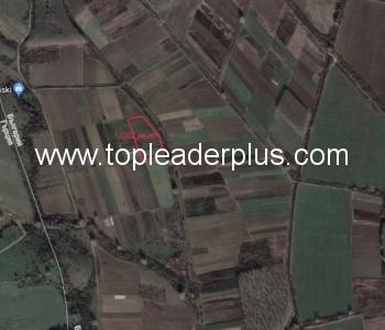Продажба на земеделска земя в землището на село Тополница, общ. Петрич